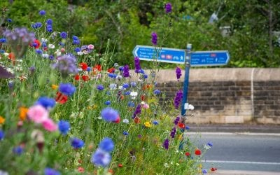 News Digest no. 35 from Bingley Town Council – September 2019