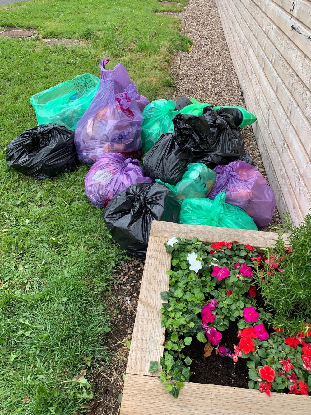 Bags of Litter